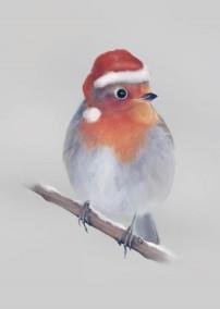 Robin card p1